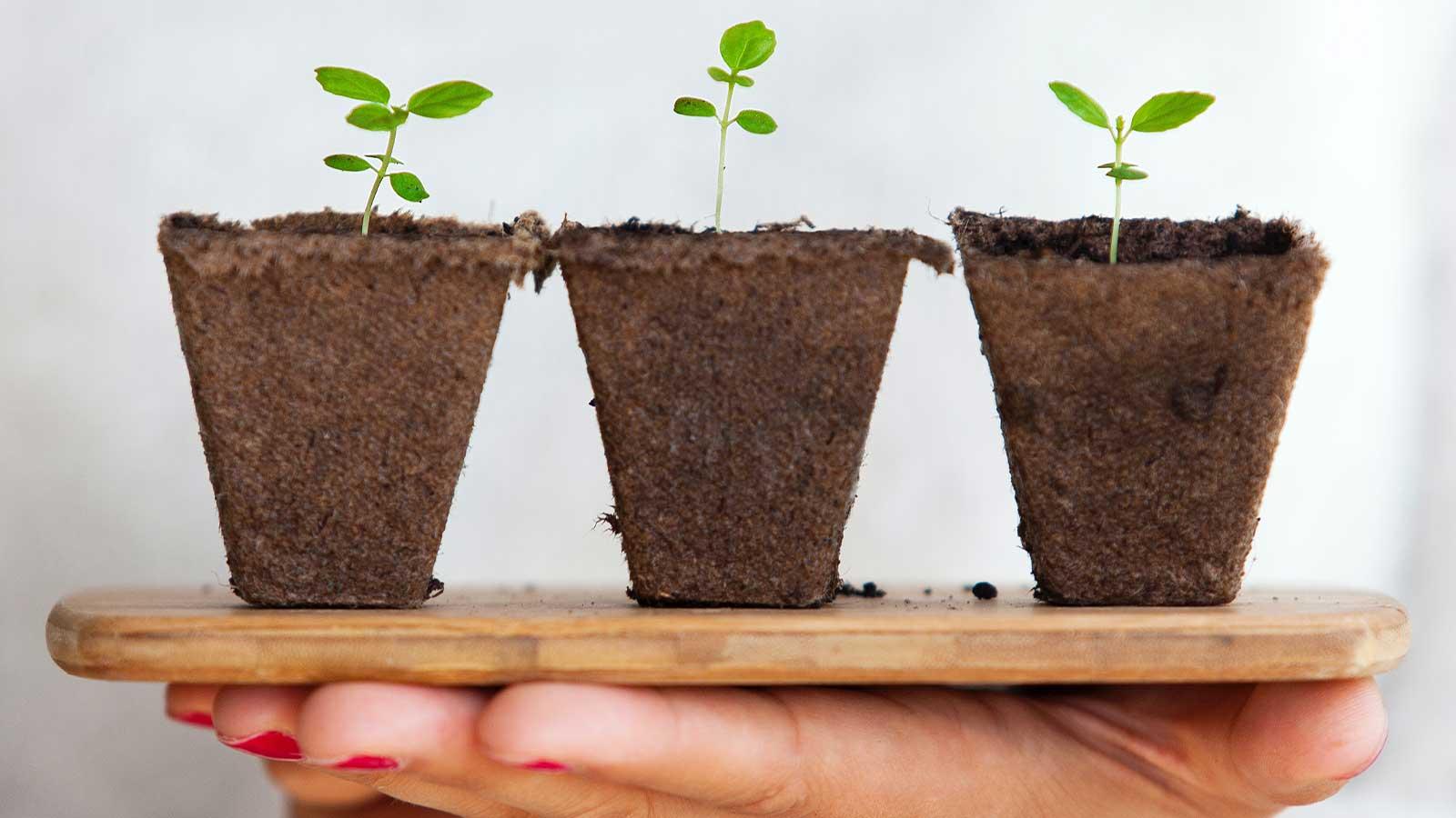 tips-para-comenzar-una-estrategia-de-lead-nurturing