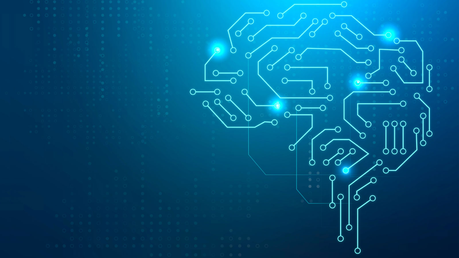 Digitized brain as machine learning representation